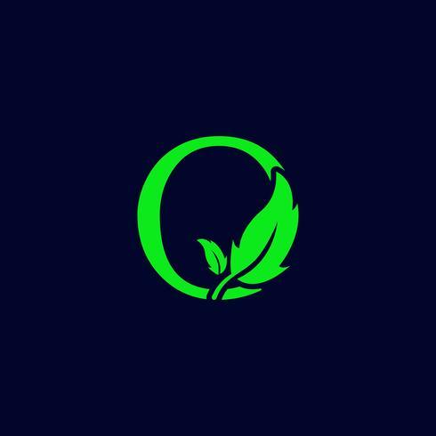lettre q feuille nature, vecteur de modèle de logo vert eco isolé