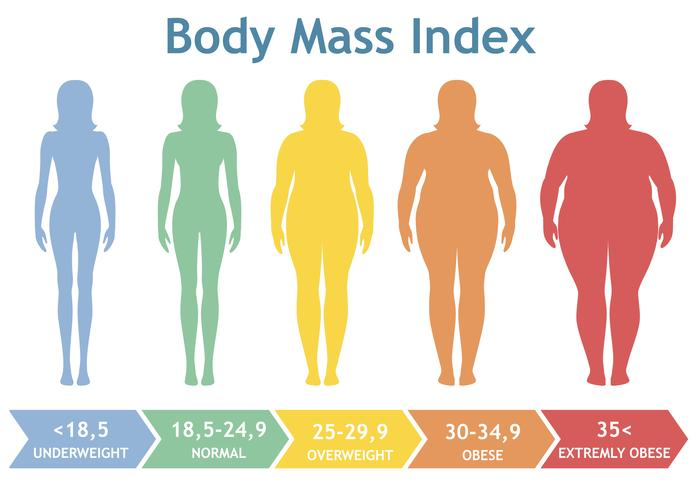 Ilustración vectorial de índice de masa corporal desde bajo peso hasta extremadamente obeso. Siluetas de mujer con diferentes grados de obesidad. vector