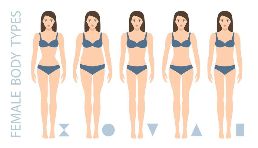 Conjunto de formas de cuerpo femenino: triángulo, pera, reloj de arena, manzana, redondeado, triángulo invertido, rectángulo. Tipos de figuras de mujer. Ilustracion vectorial