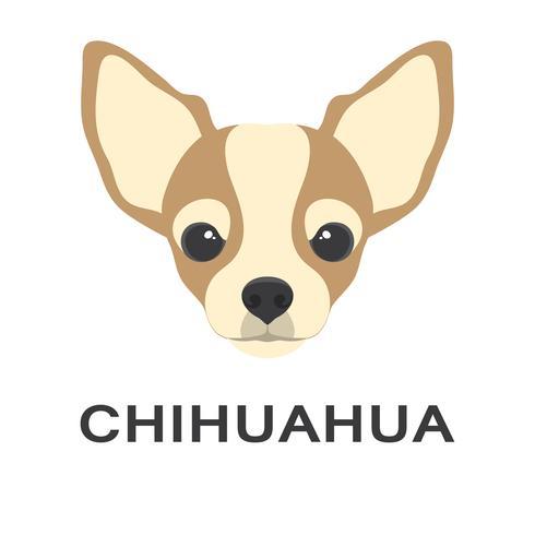 Vektorillustration og Chihuahuahund in der flachen Art. Chihuahua flache Symbol.