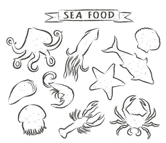 Fruits de mer illustrations vectorielles dessinés à la main isolés sur fond blanc, éléments pour la conception de menus de restaurant, décor, étiquette. Contours grunge d'animaux marins.
