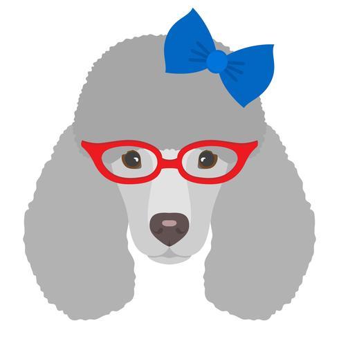 Portrait de chien caniche avec des lunettes et s'incliner dans un style plat. Illustration vectorielle de chien Hipster pour cartes, impression de t-shirt, pancarte.