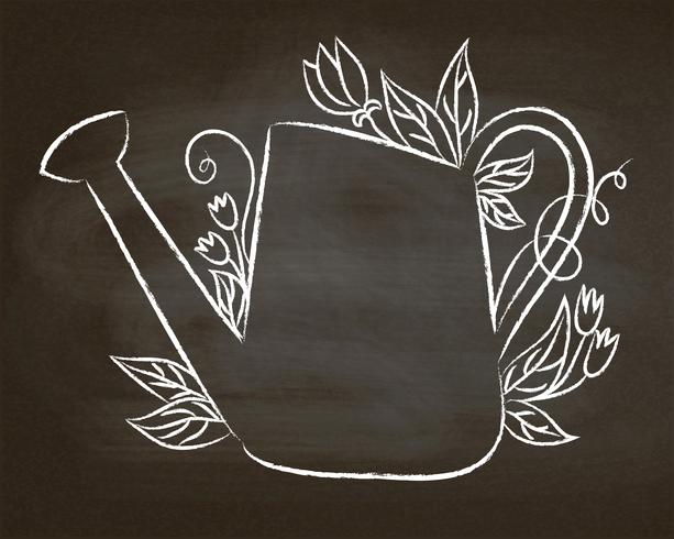 Chalk contour of vintage watering can with leaves and flowers on chalk board.  vector