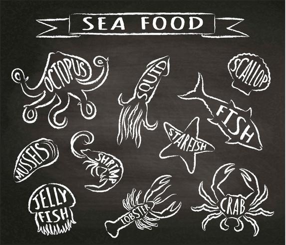 Ilustraciones del vector del contorno de la tiza de los mariscos en la pizarra, elementos para el diseño del menú del restaurante, decoración, etiqueta. Tiza texturada grunge contornos de animales marinos con nombres.