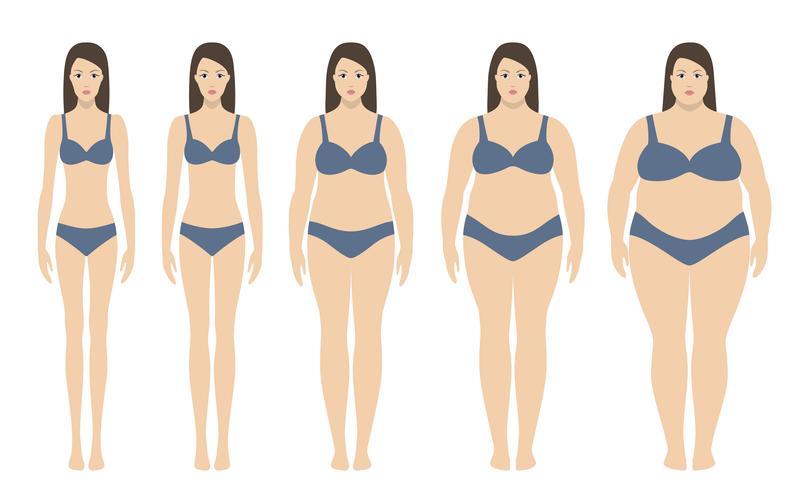 Illustration vectorielle d'indice de masse corporelle allant du poids insuffisant à extrêmement obèse. Silhouettes de femme avec différents degrés d'obésité. Concept de perte de poids.