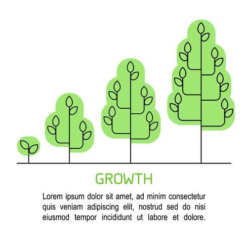 Baum wächst Prozess Infografiken. Wachstumskonzeptlinie Kunstikonen. vektor