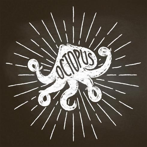 Octopus chalk silhoutte with sun rays on blackboard. Good for seafood  restaurant menu design, decor, logotypes,  or posters. vector
