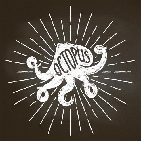 Silhoutte de craie de poulpe avec des rayons de soleil sur tableau noir. Bon pour la conception de menu de restaurant de fruits de mer, la décoration, les logotypes ou les affiches. vecteur