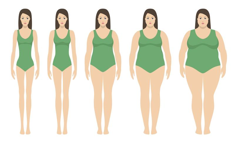 Ilustración vectorial de índice de masa corporal desde bajo peso hasta extremamente obeso. Siluetas de mujer con diferentes grados de obesidad.