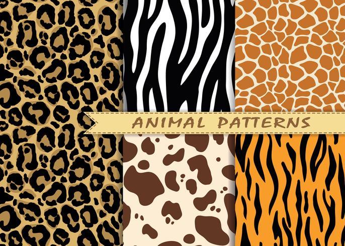 Patrones sin fisuras vector set con textura de piel animal. Repetición de fondos de animales para diseño textil, scrapbooking, papel de regalo. Vector de estampados animales.