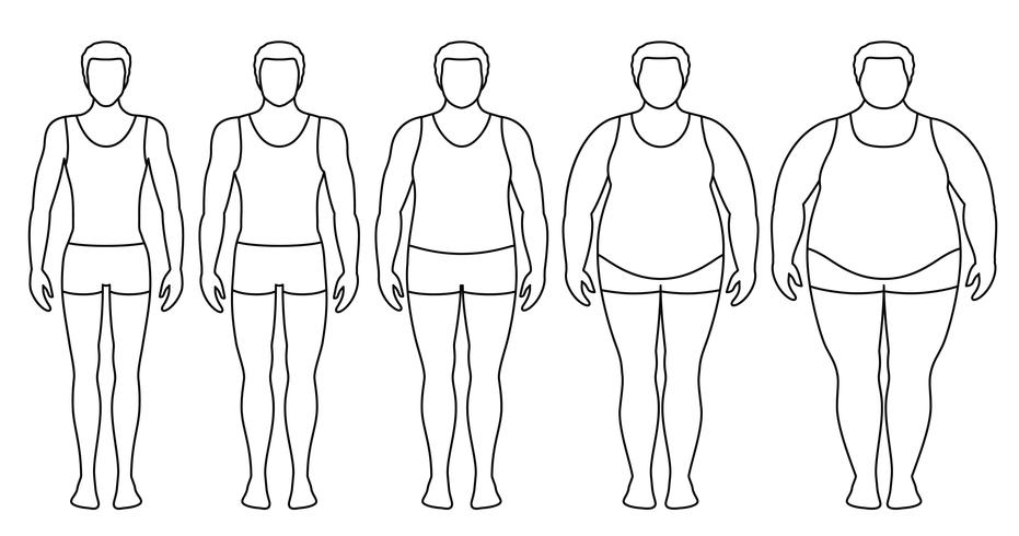 Illustration vectorielle d'indice de masse corporelle du poids insuffisant à extrêmement obèse. Les contours de l'homme avec différents degrés d'obésité. Corps masculin de poids différent. vecteur