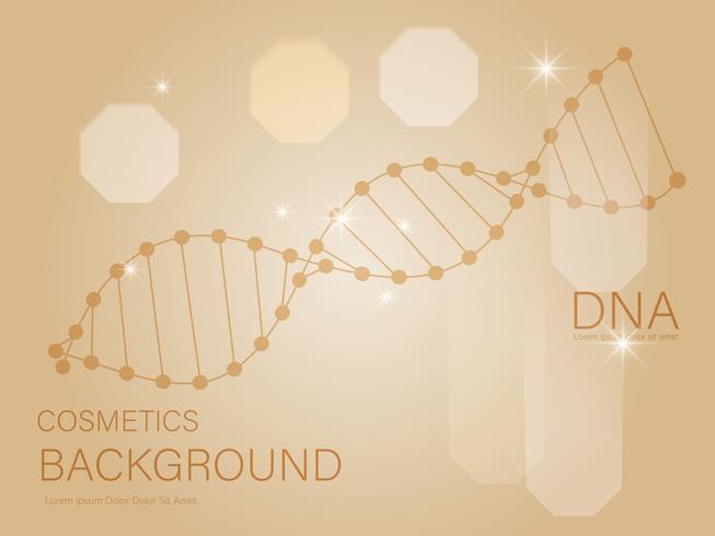 Gyllene DNA-strukturvektor. Skönhet hudvård lyx kosmetika bokeh bakgrund. vektor
