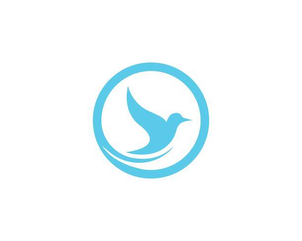 Vogel-Taube Logo Template-Vektorillustrations-APP