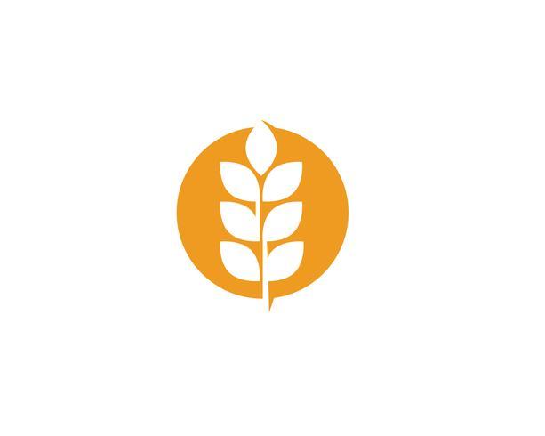 Landbouw tarwe logos