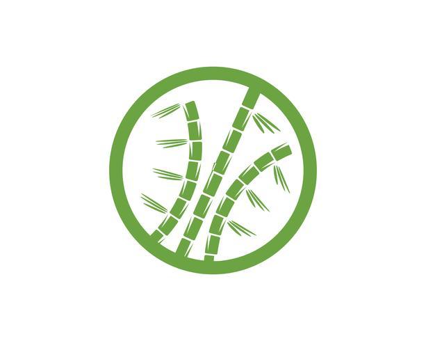 Bambu logo med grönt blad för din ikon vektor vektor mall