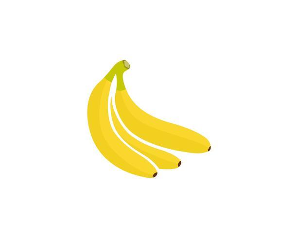 Logo de modèle vectoriel bananiers fruits