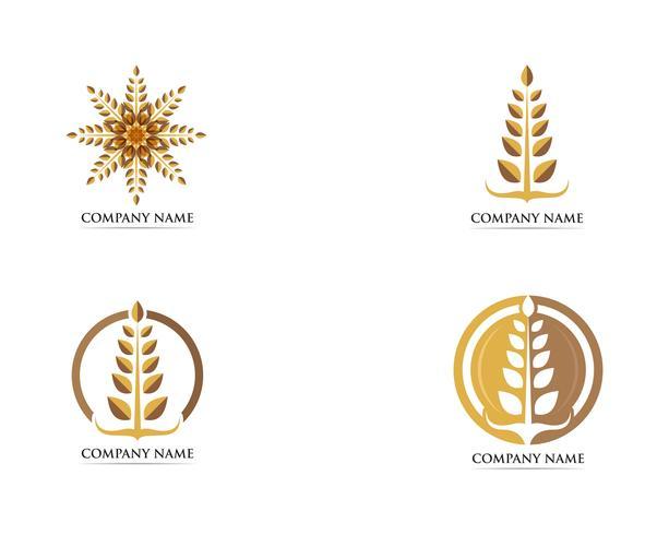 Tarwe voedsel logo vector sjabloon