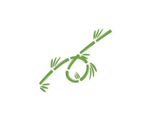Bambuslogo mit grünem Blatt für Ihre Ikonenvektorschablone