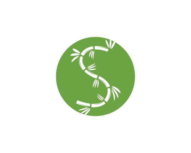 Logotipo de bambú con hoja verde para su plantilla de vector icono
