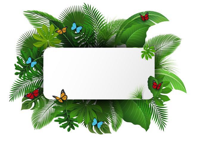 Firmar con el espacio de texto de hojas tropicales y mariposas. Adecuado para el concepto de naturaleza, vacaciones y vacaciones de verano. Ilustración vectorial vector