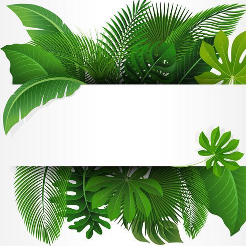 Cadastre-se com espaço de texto de folhas tropicais. Apropriado para o conceito de natureza, férias e férias de verão. Ilustração vetorial