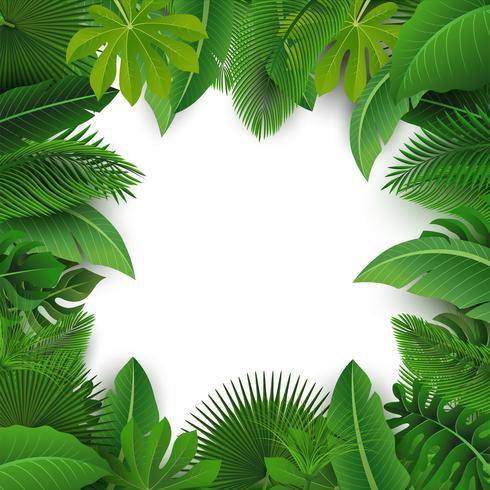 Fondo con espacio de texto de hojas tropicales. Adecuado para el concepto de naturaleza, vacaciones y vacaciones de verano. Ilustración vectorial