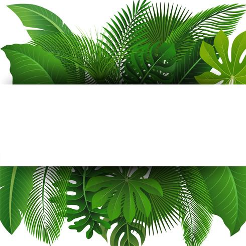Signe avec espace de texte des feuilles tropicales. Convient pour le concept de la nature, les vacances et les vacances d'été. Illustration vectorielle