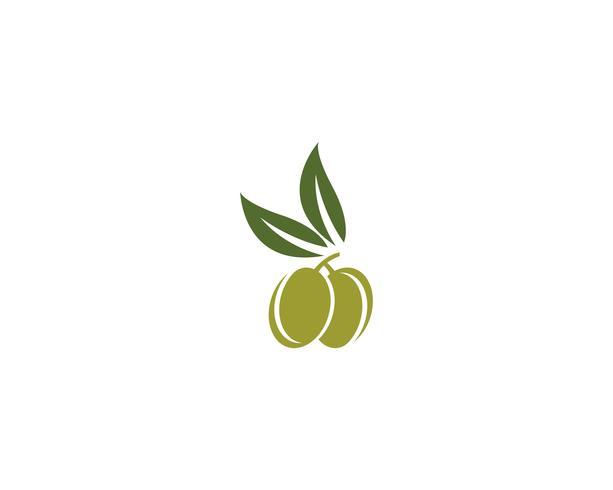oliv logotyp mall vektorikonen