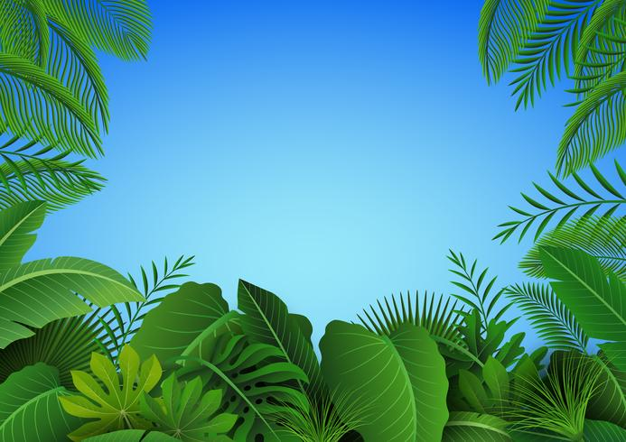 Hintergrund der tropischen Blätter. Geeignet für Naturkonzept, Urlaub und Sommerurlaub. Vektor-Illustration vektor