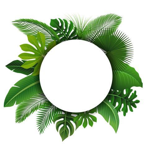 Sinal redondo com espaço de texto de folhas tropicais. Apropriado para o conceito de natureza, férias e férias de verão. Ilustração vetorial