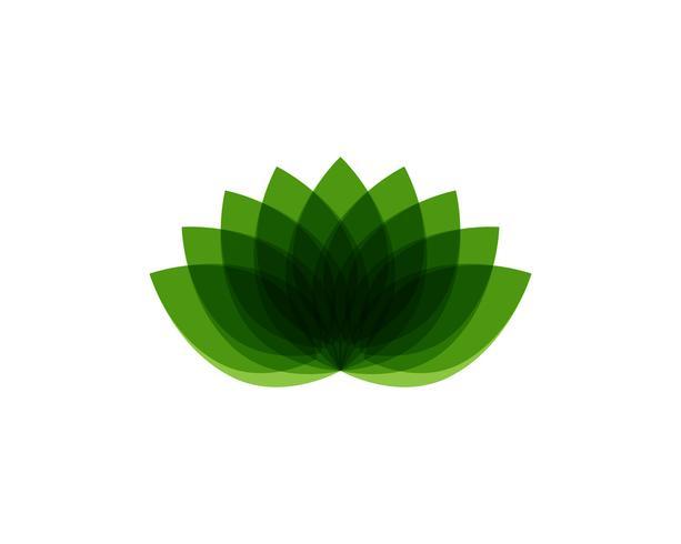 Lotus blomma logotyp och symboler vektor mall