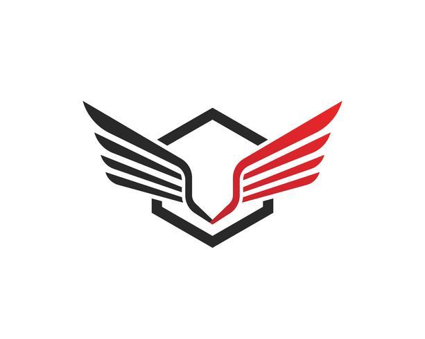 Falcon Wing Logo Template projeto do ícone do vetor
