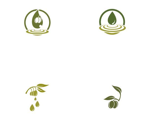 icona di vettore del modello logo oliva