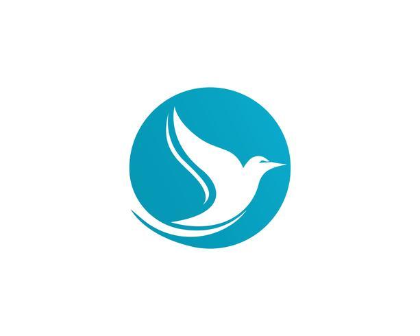 App dell'illustrazione di vettore del modello di logo della colomba dell'uccello