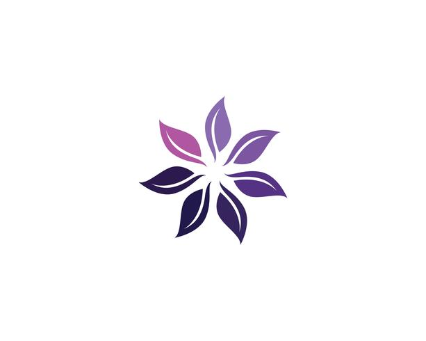 bloemenpatronenembleem en symbolen witte achtergrond vector