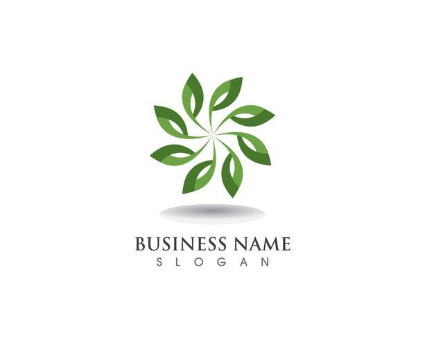 logo de motifs floraux et symboles sur fond blanc vecteur