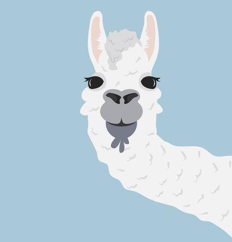 Happy head llama Vector Illustration