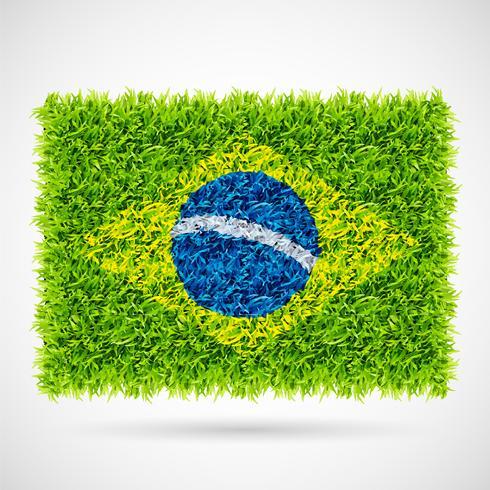 Brasilien flagga gräs vektor