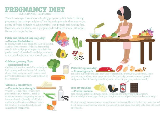 gravidanza dieta infografica vettore