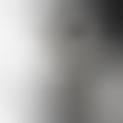 Set van elegante abstracte grijze achtergronden vector illustratie