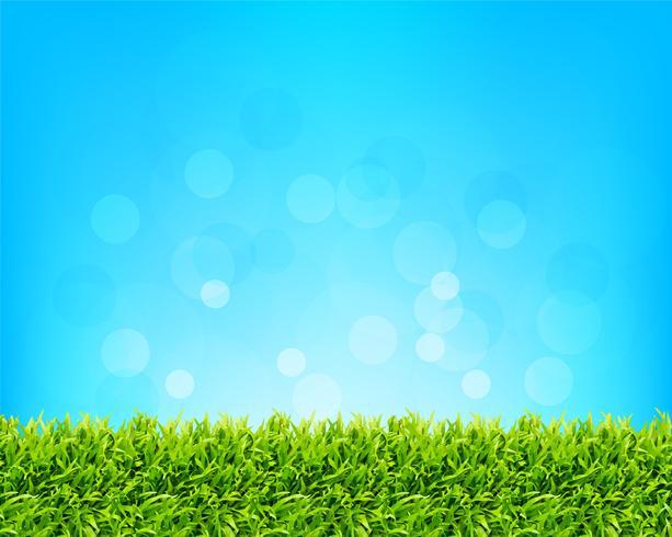 Fondo de cielo y hierba vector