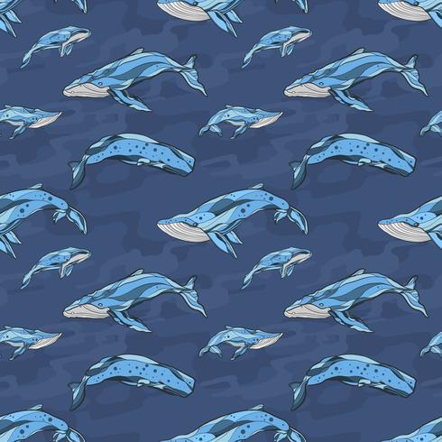 Whale seamless mönster handrawn