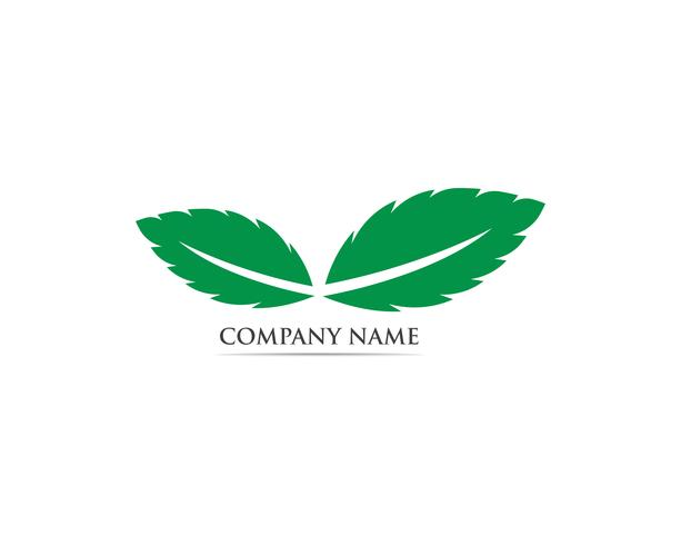 Vector de hoja de menta logo y símbolo