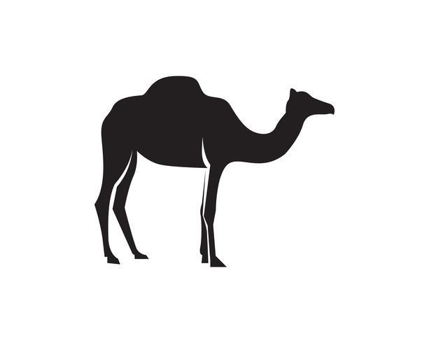 Vector de plantilla de logotipo de camello