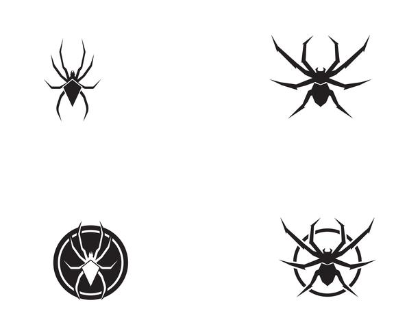 Spider logo vector illustrations
