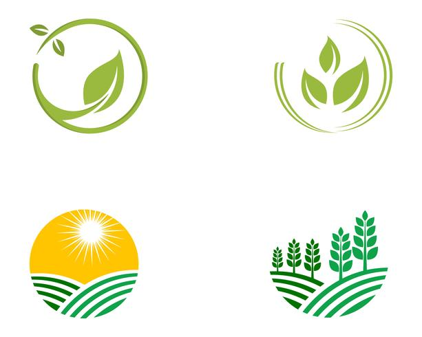 Agriculture business logo template unique green vector image