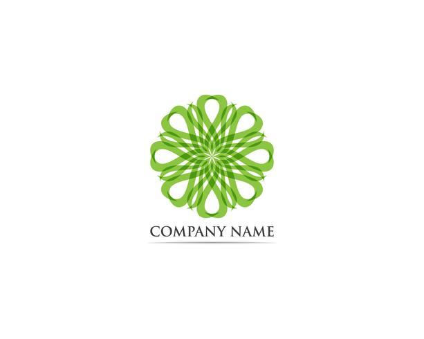 Minze Blatt Logo und Symbol Vektor
