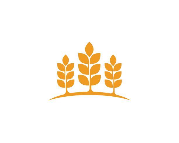 Landwirtschaftsweizen Logos