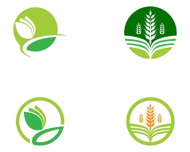 Imagen de vector verde único de plantilla de logotipo empresarial de agricultura