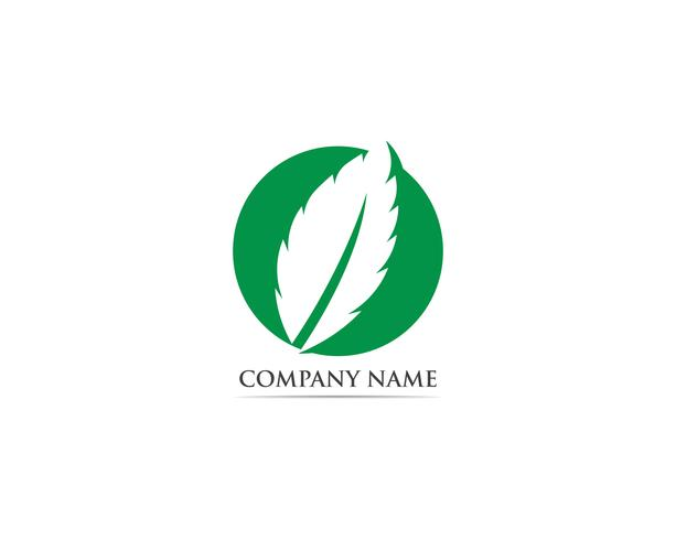 Mint leaf logo and symbol vector